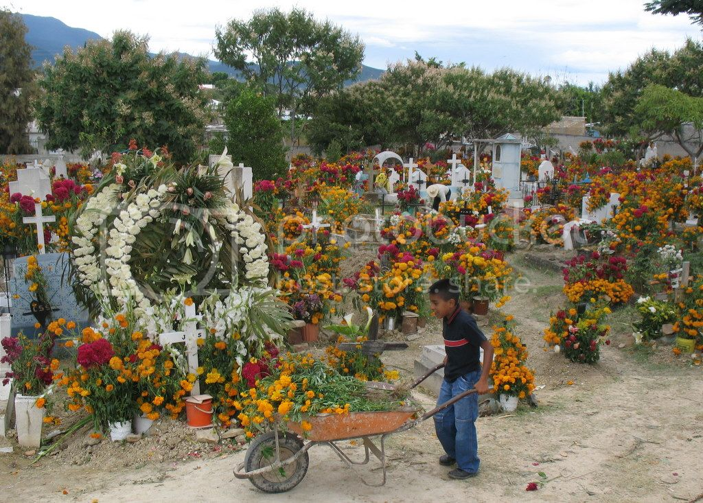Day of the Dead Dia de Muertos Oaxaca Mexico 